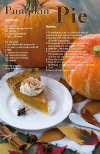 Pumpkin Pie Recipe Postcard