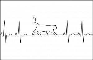 Cat Lover's EKG Postcard