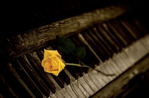 Rose on the Piano